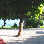 Park am Meer