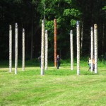 """Public Viewing"" im Wald"